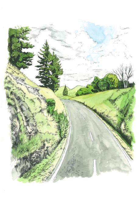 NZ road 6